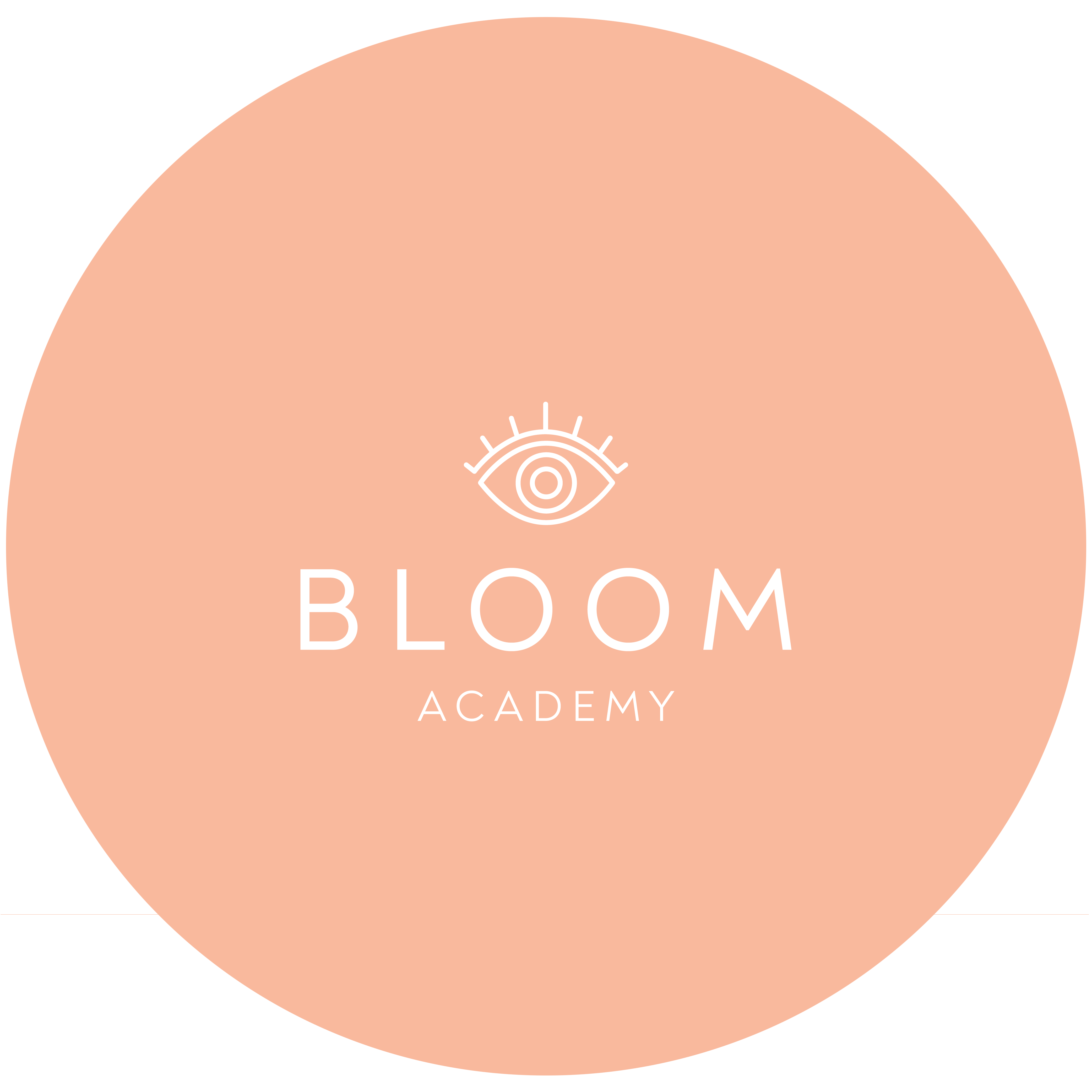 bloom-academy 1